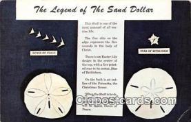 she001001 - Legend of the Sand Dollar Mellita Testudinata, Holy Goast Shell Postcards Post Cards Old Vintage Antique
