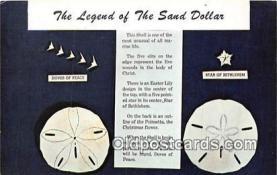 she001008 - Legend of the Sand Dollar Mellita Testudinata, Holy Goast Shell Postcards Post Cards Old Vintage Antique