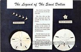 she001012 - Legend of the Sand Dollar Mellita Testudinata, Holy Goast Shell Postcards Post Cards Old Vintage Antique