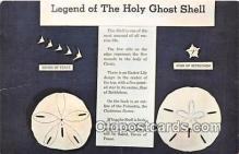 she001017 - Legend of the Holy Ghost Shell Mellita Testudinata, Holy Goast Shell Postcards Post Cards Old Vintage Antique