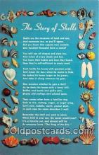 Story of the Shells
