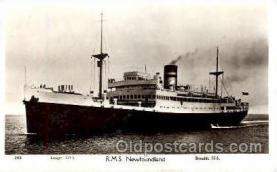 shi008736 - RMS Newfoundland Steamer Ship Ships Old Vintage Postcard Postcards
