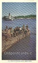shi009470 - Peceurs D eperlans, Quebec Steam Ship Postcard Post Cards