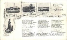 shi058065 - Str. Hawthorne Steamer, Steamers, Ship, Ships Postcard Postcards