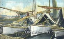 shi100179 - Sail Boat Postcard Post Card