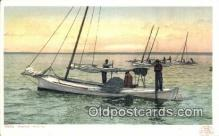 shi100251 - Oyster Tonging Sail Boat Postcard Post Card