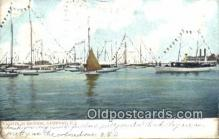 shi100326 - Harbor, Newport, Rhode Island, RI USA Sail Boat Postcard Post Card