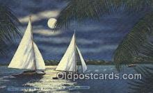 shi100388 - Florida, FL USA Sail Boat Postcard Post Card