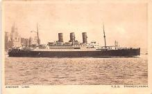 shp010195 - Anchor Line Ship Postcard Old Vintage Antique Post Card