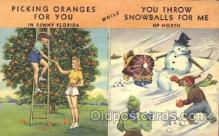 sno001055 - Florida Series Snowman Postcard Postcards