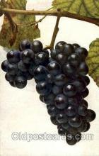 Vitis Vinifera-Wein