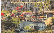 sub000383 - A Southern Tropical Garden in Beautiful Florida