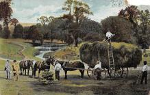 sub001265 - Hay wagon pulled by horse