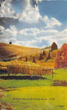 sub001271 - Harvest Time in the Sunny South