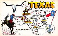 sub014043 - Texas                     Lone Star State, USA Postcard