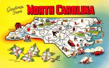 sub014149 - Greetings from North Carolina USA Postcard