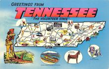 sub014175 - Greetings from Tennessee USA Postcard