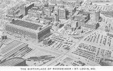 sub015595 - The birthplace of Budweiser St Louis, MO.  USA Postcard