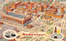 sub015621 - Home of Budweiser  St Louis, MO.  USA Postcard