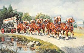 sub015641 - Meister Brau Stallion Hitch  Postcard