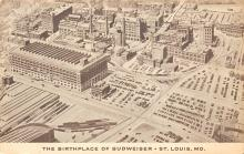 sub015749 - The birthplace of Budweiser St. Louis, Mo., USA Postcard