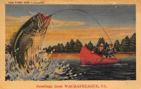 Wachapreague VA