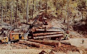 sub054915 - Logging Post Card