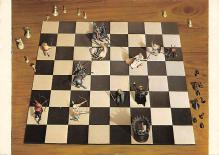 sub057697 - Chess Post Card
