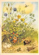 sub057775 - Elves & Gnomes Post Card