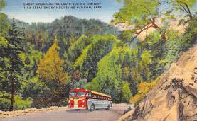 sub058419 - Bus Post Card