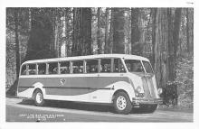 sub058711 - Bus Post Card