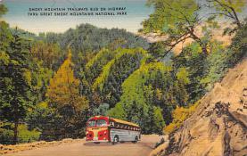 sub058981 - Bus Post Card