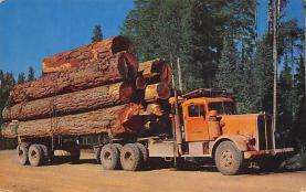 sub062657 - Trucks Post Card