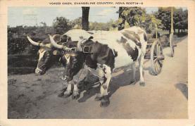 sub063077 - Stagecoach Post Card