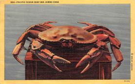 sub063625 - Lobsters Post Card