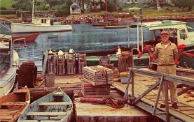 sub063627 - Lobsters Post Card