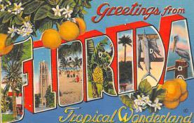 sub064425 - Orange Groves Post Card