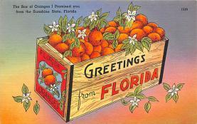 sub064427 - Orange Groves Post Card
