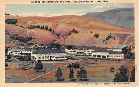 sub065301 - Yellowstone National Park Post Card