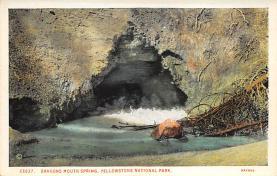 sub065325 - Yellowstone National Park Post Card
