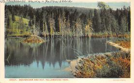 sub065331 - Yellowstone National Park Post Card
