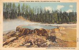 sub065393 - Yellowstone National Park Post Card