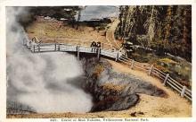 sub065437 - Yellowstone National Park Post Card