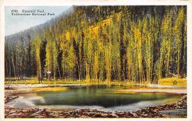 sub065485 - Yellowstone National Park Post Card