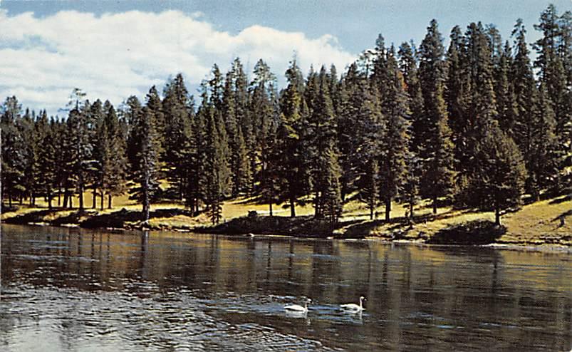 sub065141 - National Park Post Card