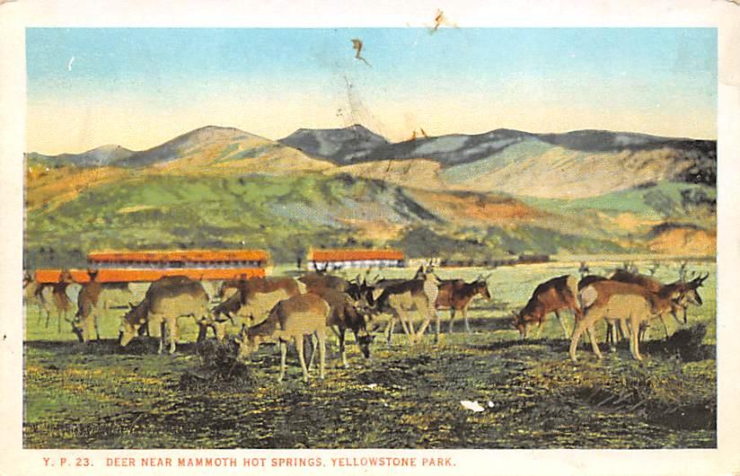 sub065195 - National Park Post Card