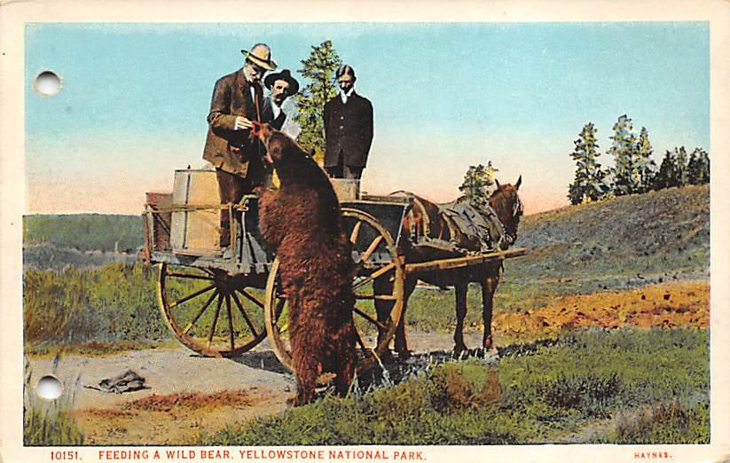 sub065221 - National Park Post Card