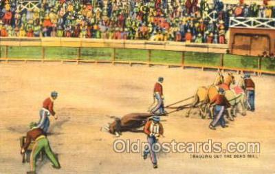 spo017147 - Bullfighting Postcard Postcards