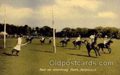 spo019003 - Polo at Cowdray Park, Midhurst, Postcard Postcards