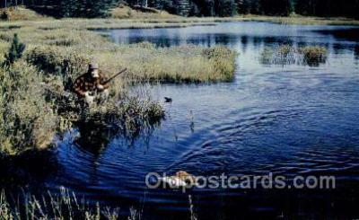 Driftwood Lodge Minocqua Wis USA